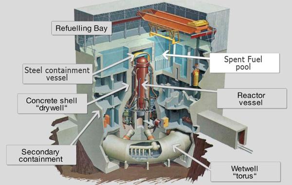 Fukushima Daiichi nuclear reactor